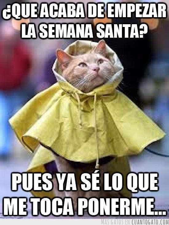 CG_24414_maldita_lluvia_siempre_fastidiando_la_semana_santa